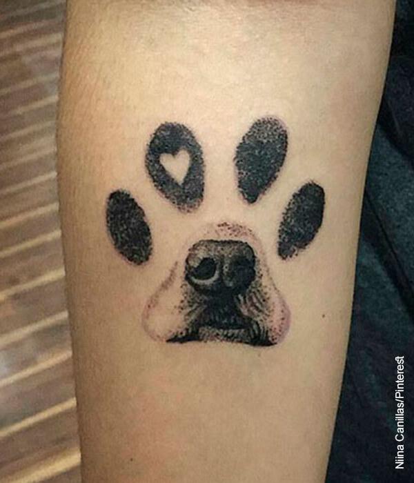 Foto del hocico de un perro que ilustra el tatuaje de un perro