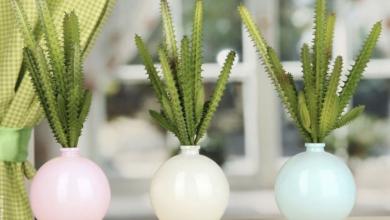 Tipos de cactus: las plantas de moda para decorar