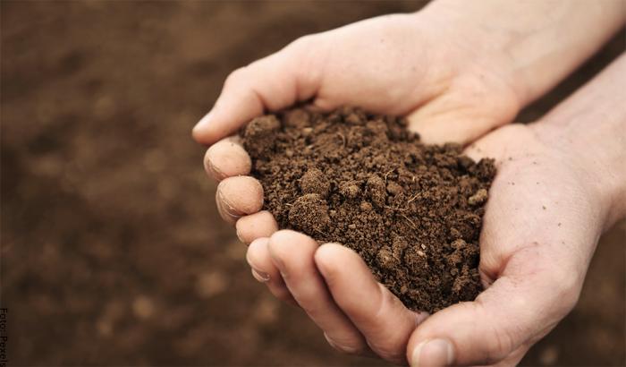 Foto de una persona con tierra en las manos