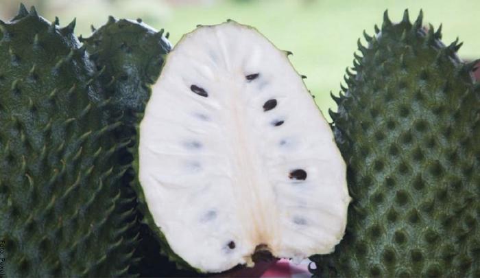Foto de una guanábana en la mitad