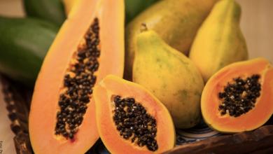 Cómo sembrar papaya en un dos por tres