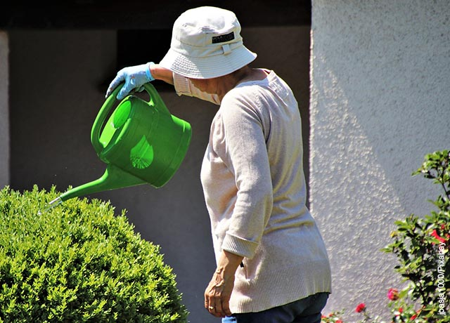 Foto de una mujer regando sus plantas