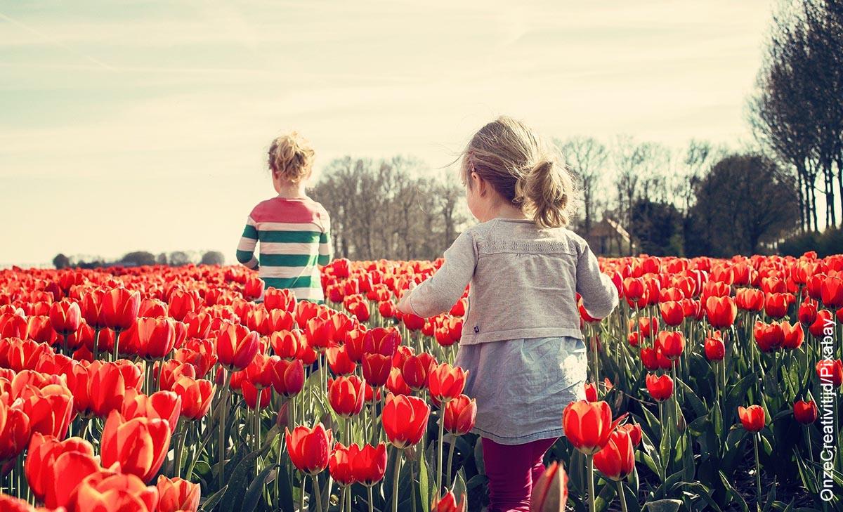 Foto de dos niñas corriendo entre tulipanes que ilustra cómo sembrar una planta