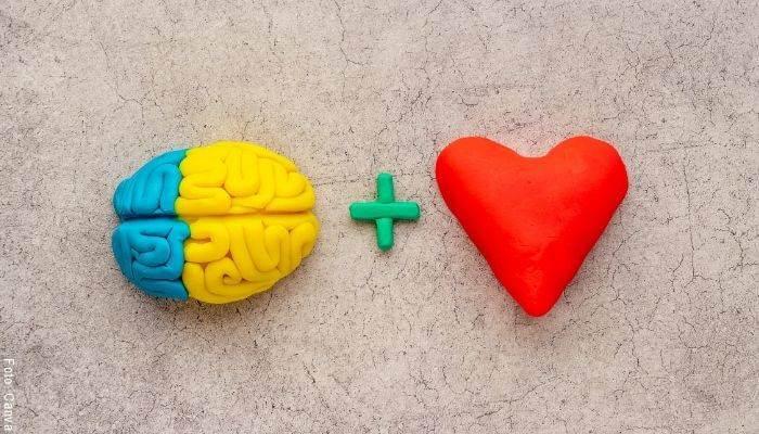 Foto de un cerebro más un corazón