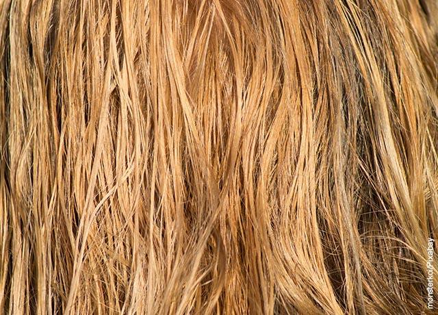 Foto del cabello rubio mojado de una mujer