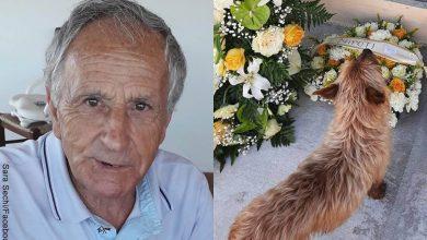 Perro visita la tumba de su propietario todos los días