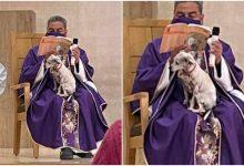 Sacerdote llevó a su perrita enferma a misa y conmovió a miles