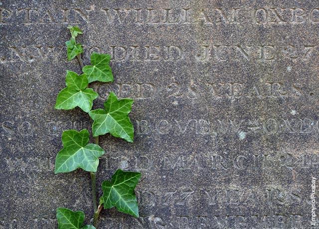 Foto de una lápida con plantas que ilustra soñar con entierro