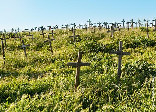 Foto de varias cruces en un monte