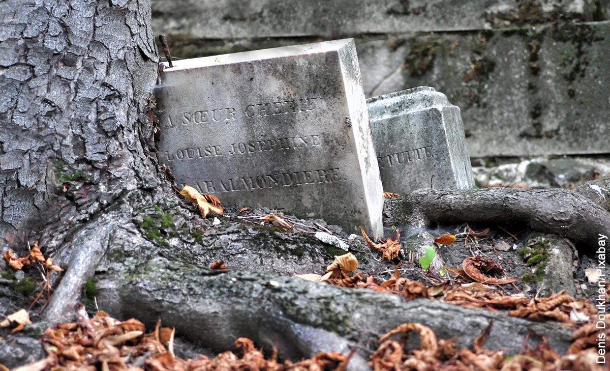 Foto de una lápida junto a un árbol que ilustra soñar con entierro