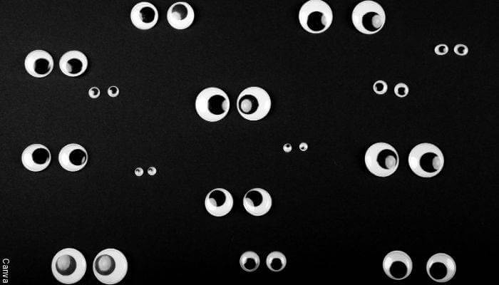 Imagen de muchos ojos