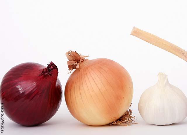 Foto de dos cebollas cabezonas y un ajo