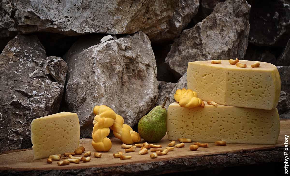Foto de una variedad de quesos sobre una mesa que ilustra las recetas con queso