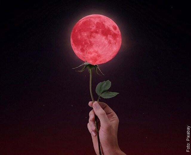ilustración de la super luna de flores