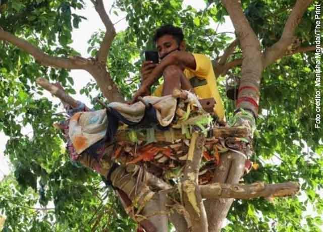 Joven vivió sobre árbol para no contagiar a su familia con Covid