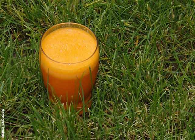 Foto de un vaso de jugo sobre el pasto