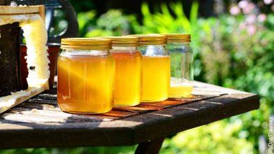 Foto de 4 tarros de miel que muestran para qué sirve la jalea