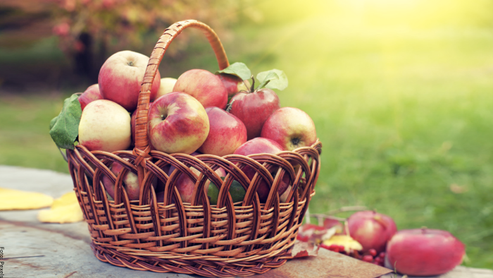 Foto de manzanas en una canasta