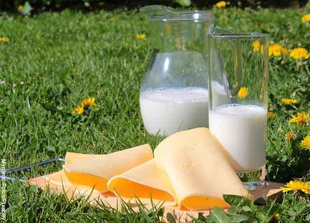 Foto de una jarra y un vaso de leche junto con queso amarillo