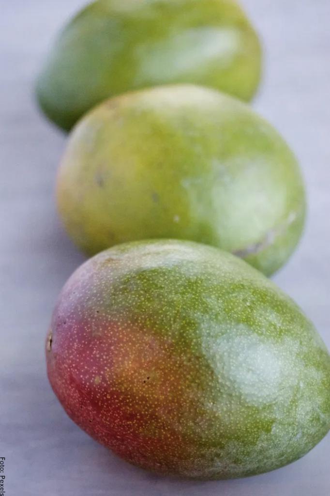 Foto de mangos verdes