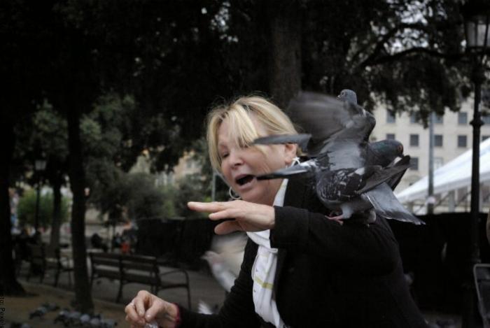 Foto de unas palomas atacando a una mujer