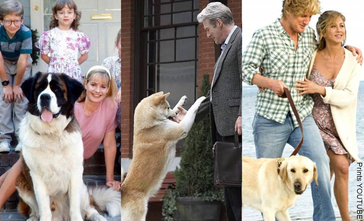 5 películas tristes de perros para llorar a moco tendido