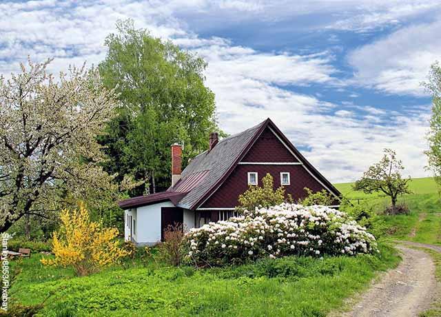Foto de una casa de campo pequeña entre flores