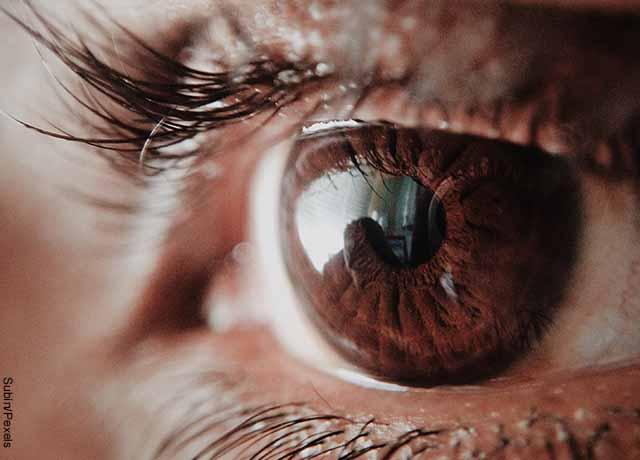 Foto de las pupilas del ojo de una mujer