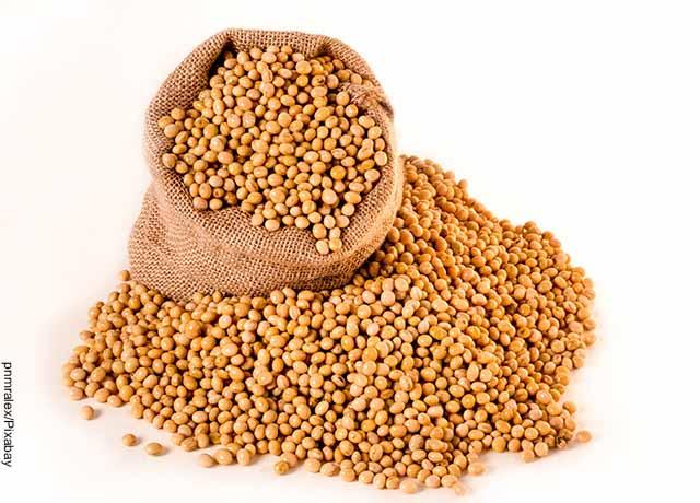 Foto de un costal lleno de granos