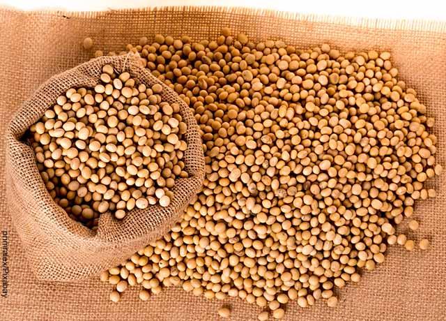 Foto de un costal repleto de granos que muestra la lecitina de soya para qué sirve