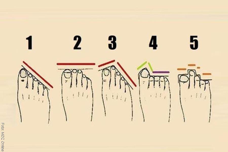 Dibujo de la forma de los dedos de los pies para un test de personalidad