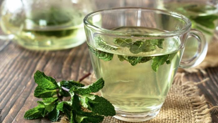 Foto de taza de té de hierbabuena