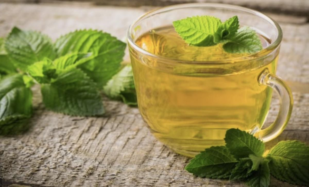 Para qué sirve el té de hierbabuena y cuáles son sus beneficios