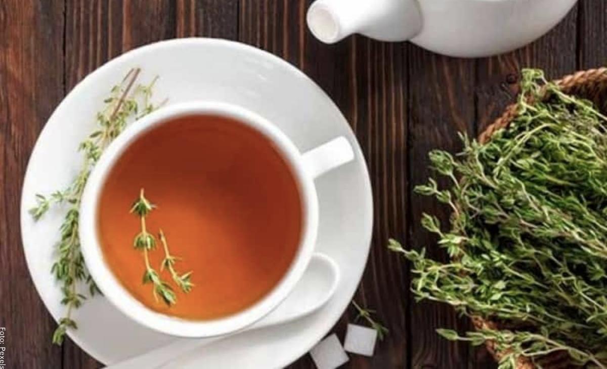 Para qué sirve el té de orégano, ¡beneficios que no imaginabas!