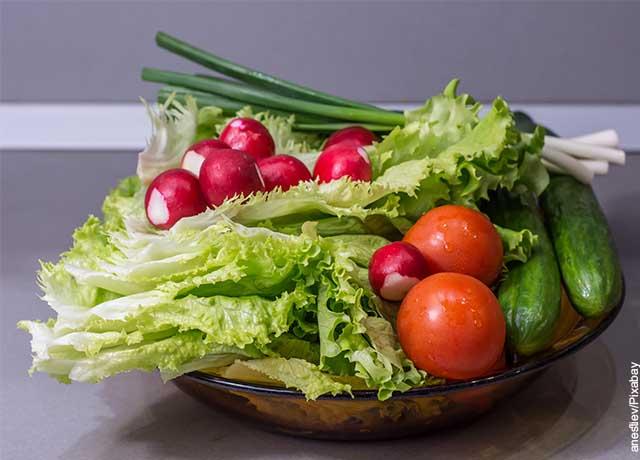 Foto de tomates, lechugas y pepinos