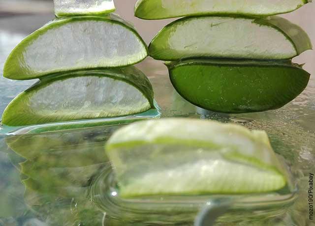 Foto de muchos cristales de áloe vera sumergidos en su gel