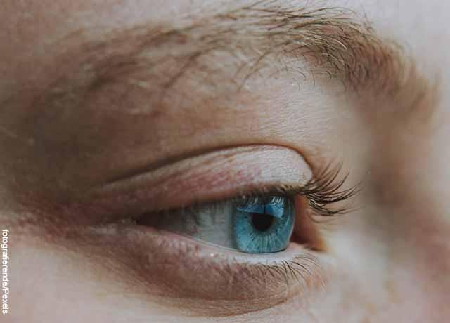 Foto del ojo de una mujer y sus cejas