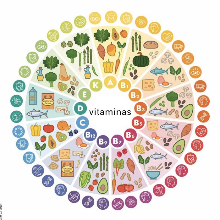 Foto de los diferentes tipos de vitaminas