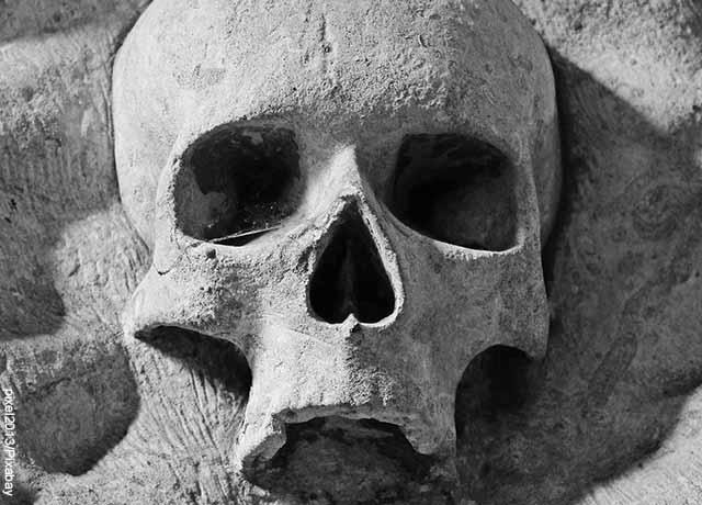 Foto de una calavera en piedra