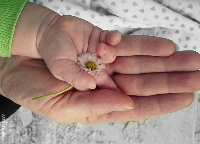 Foto de las manos de un bebé y su mamá