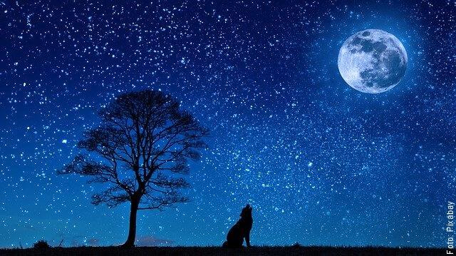 ilustración de paisaje nocturno