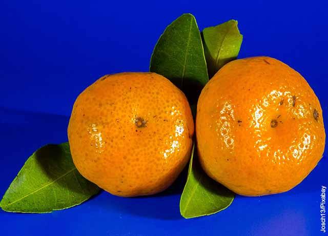 Foto de dos mandarinas sobre una mesa azul