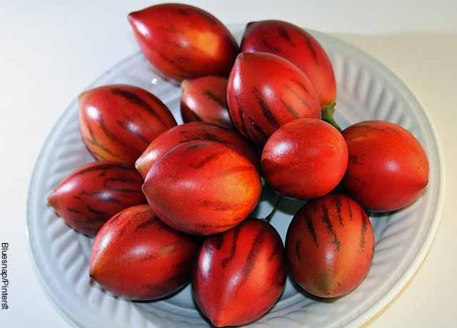 Foto de un plato lleno de tomates de árbol
