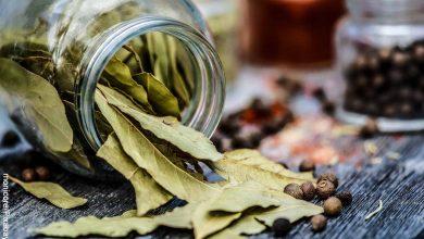 Foto de un tarro de especias que revela para qué sirve la hoja de laurel
