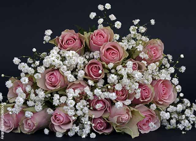 Foto de un ramo de rosas rosadas