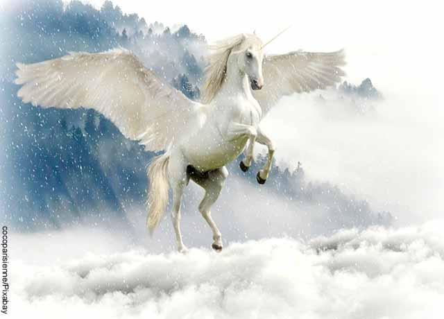 Foto de un pegaso que muestra lo que es soñar con caballo blanco