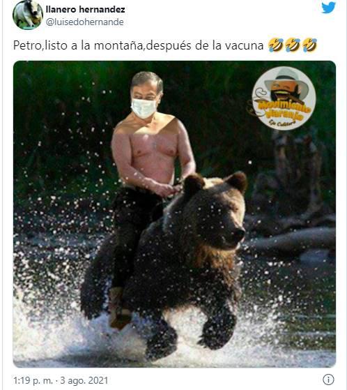 Mem de Petro sobre un oso para ilustrar los mejores memes de Petro vacunándose