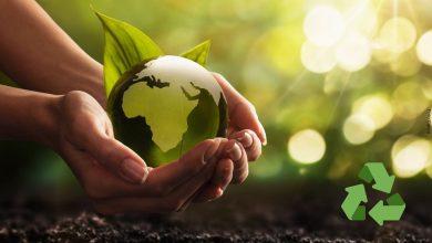 Mitos y verdades del reciclaje