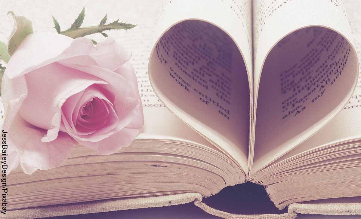 Foto de las hojas de un libro que forman un corazón que muestra qué significa la palabra amor