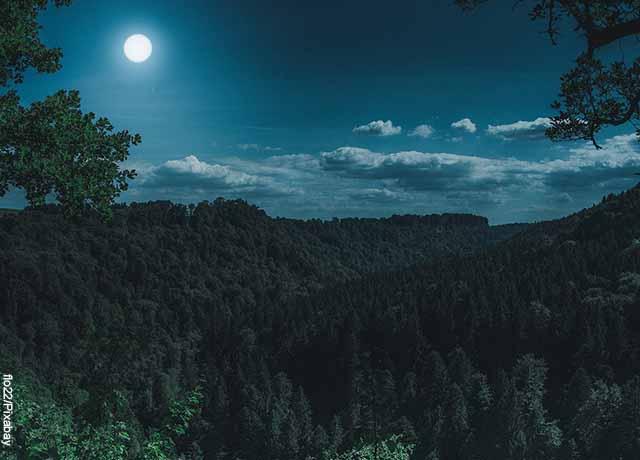 Foto de un paisaje en la noche